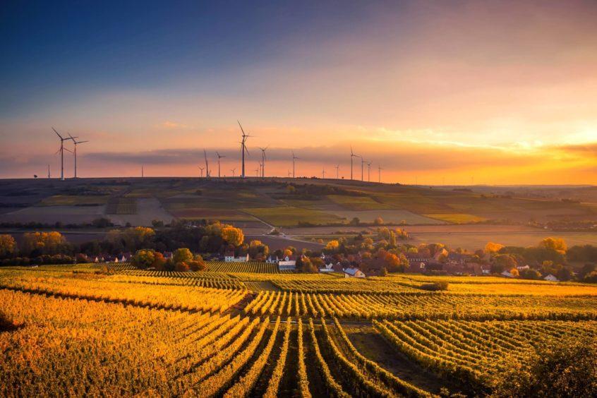 a healthy farm at sunset