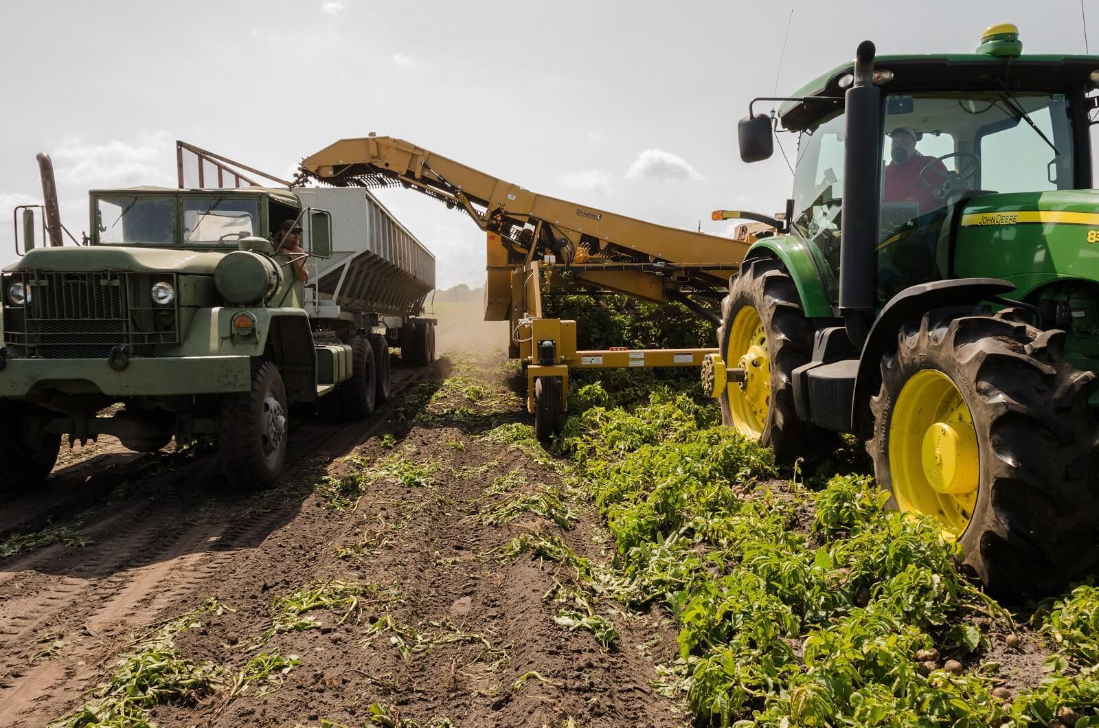 Alysson Sterling instrumental infrastructure in farming: part i   aginvest