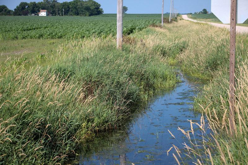 Image of creek running through farm in Iowa.